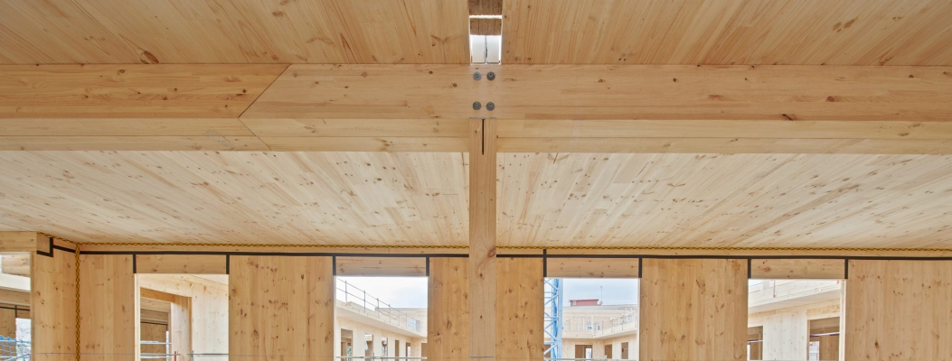 Public initiatives for wood-based buildings
